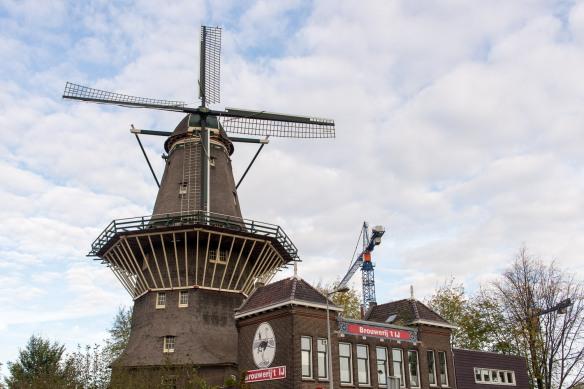 Amsterdam-Food-Coffee-Tour-Day3-1