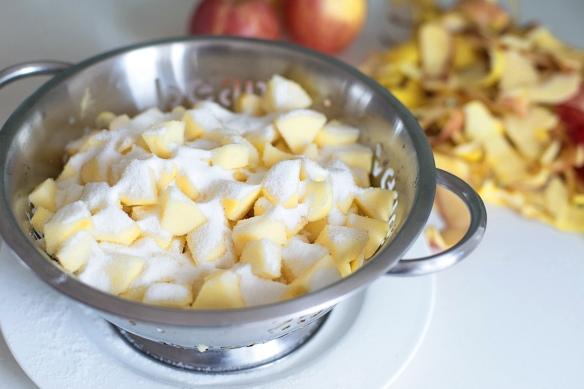 Apple-Strudel-Recipe-5