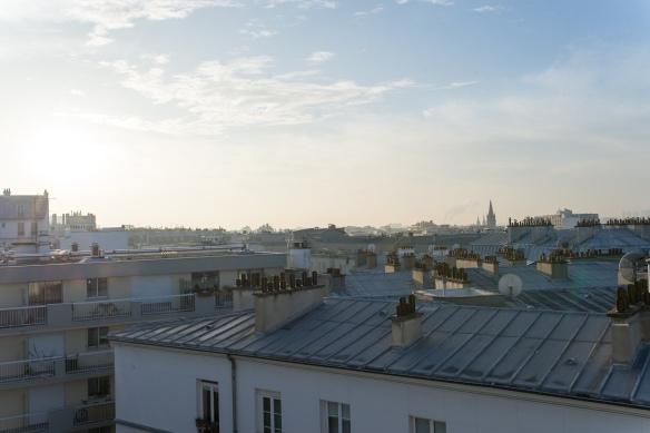 Rooftops-Paris-1-2